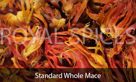 Standard Whole Mace